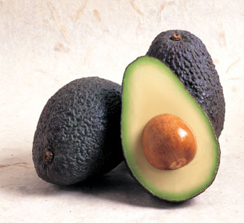 avocado-pic-web